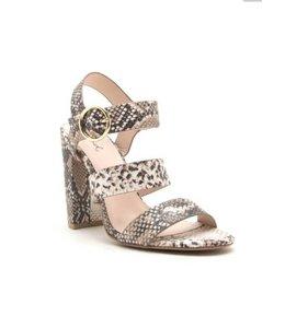 Shoe Shi Cashmere-72