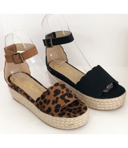 a6810477fd Collection - Shoe Shi Boutique
