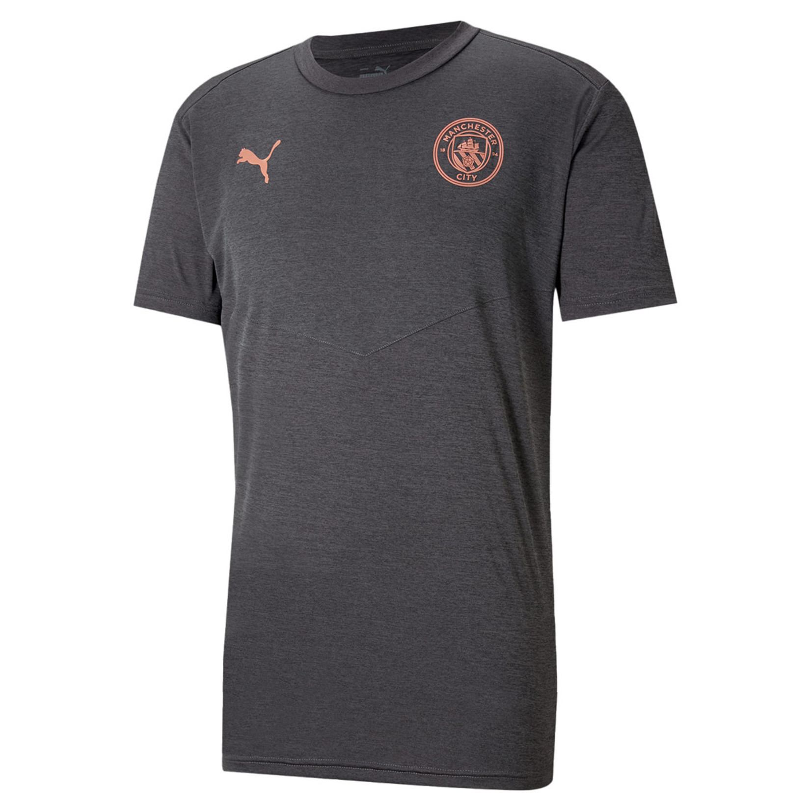 PUMA MANCHESTER CITY 20/21 WARMUP TEE (GRAY)