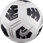 NIKE NFHS CLUB ELITE TEAM BALL (WHITE/BLACK/SILVER)