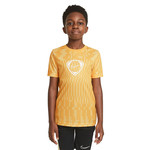 NIKE JOGA BONITO DRI-FIT ACADEMY TEE YOUTH (GOLD)