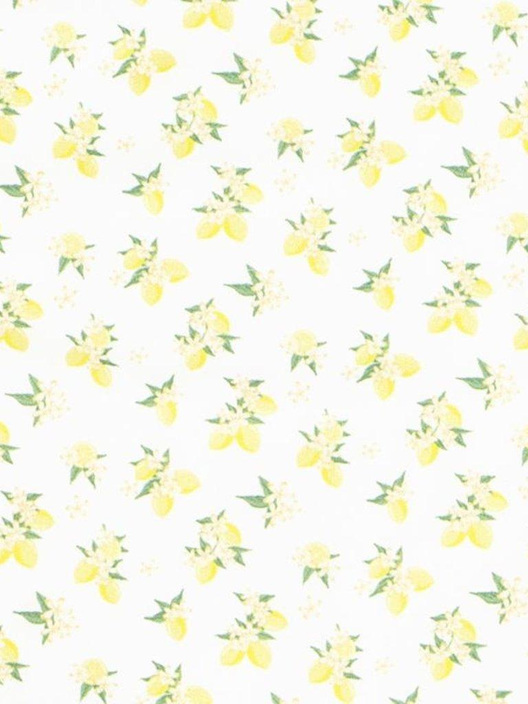 582ac76897ce8 Rashguard One Piece - Lemon Drop - MacPherson Toy House