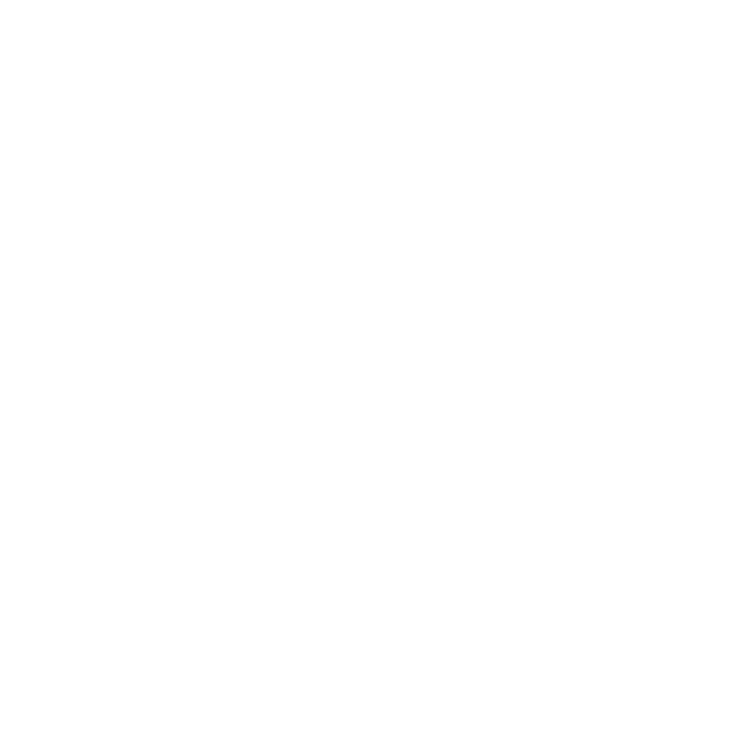 MacPherson Toy House