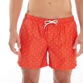 Seahorse Print Swimwear