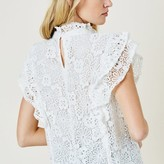 Felicia Sheer Ruffle Lace Top