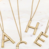 Initial Letter Charm Long Necklace
