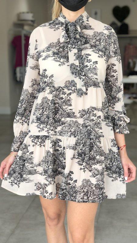 Paige V Neck Dress w/ Ruffle Longsleeve
