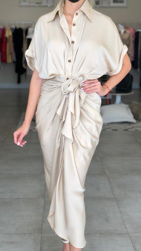 Esme Button Down Satin Dress