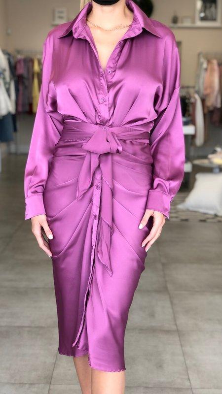 Elsa Collar Button Down Fron Tie Dress