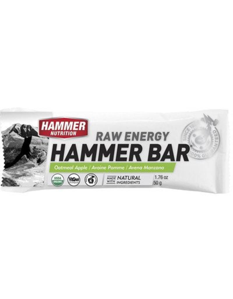 Hammer Nutrition Hammer Nutrition Bar Apple Oatmeal (Raw Energy Bar)