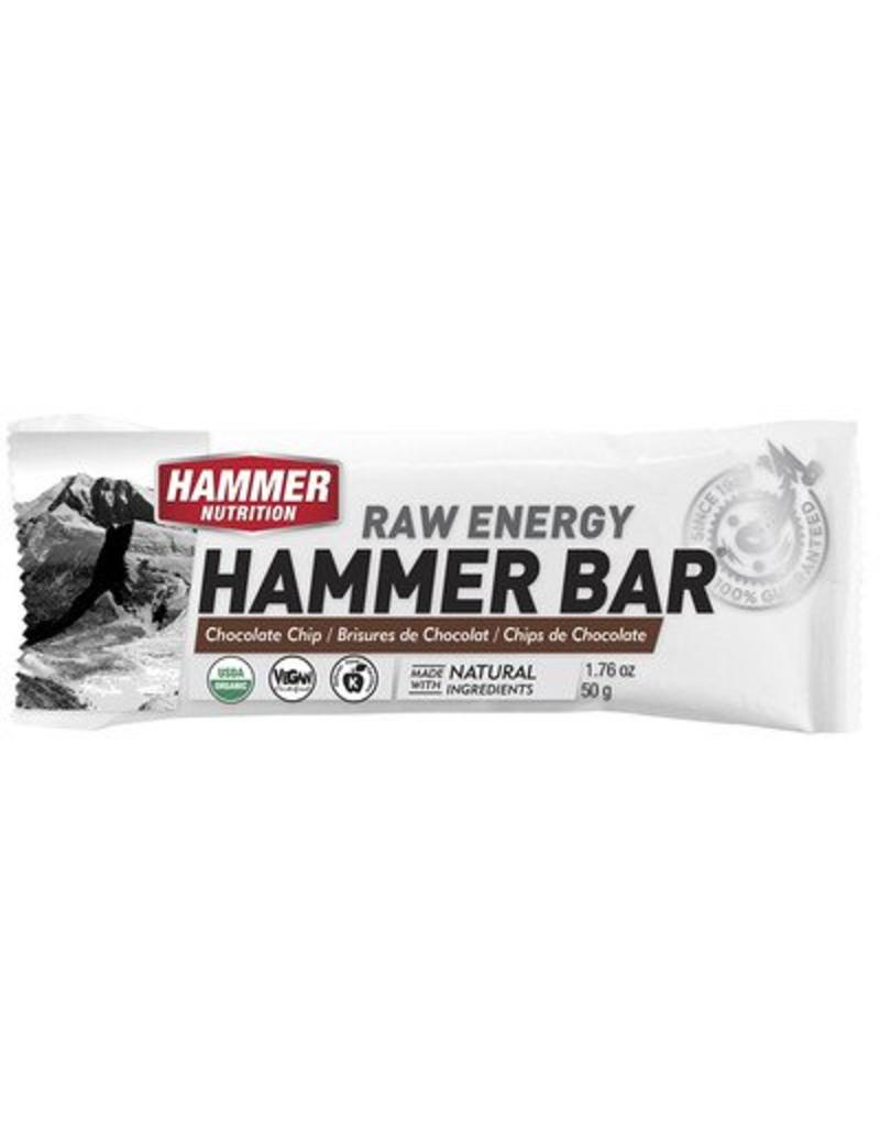Hammer Nutrition Hammer Nutrition Bar Choc Chip (Raw Energy Bar)