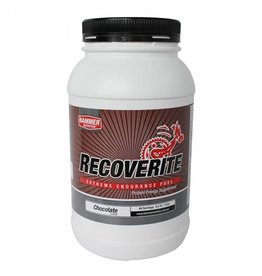 Hammer Nutrition Hammer Nutrition Recoverite Chocolate