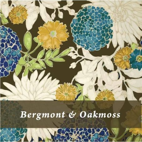 Creative Energy Bergmont and Oakmoss TIn