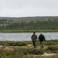Veste en laine polaire Cascapédia Brun Kaki