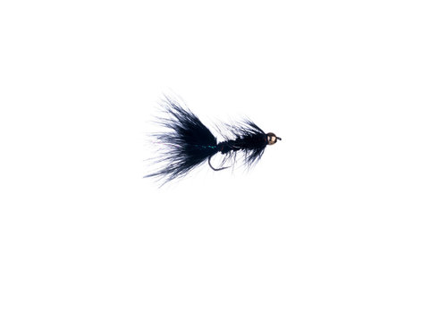 BH Woolly Bugger Black #06