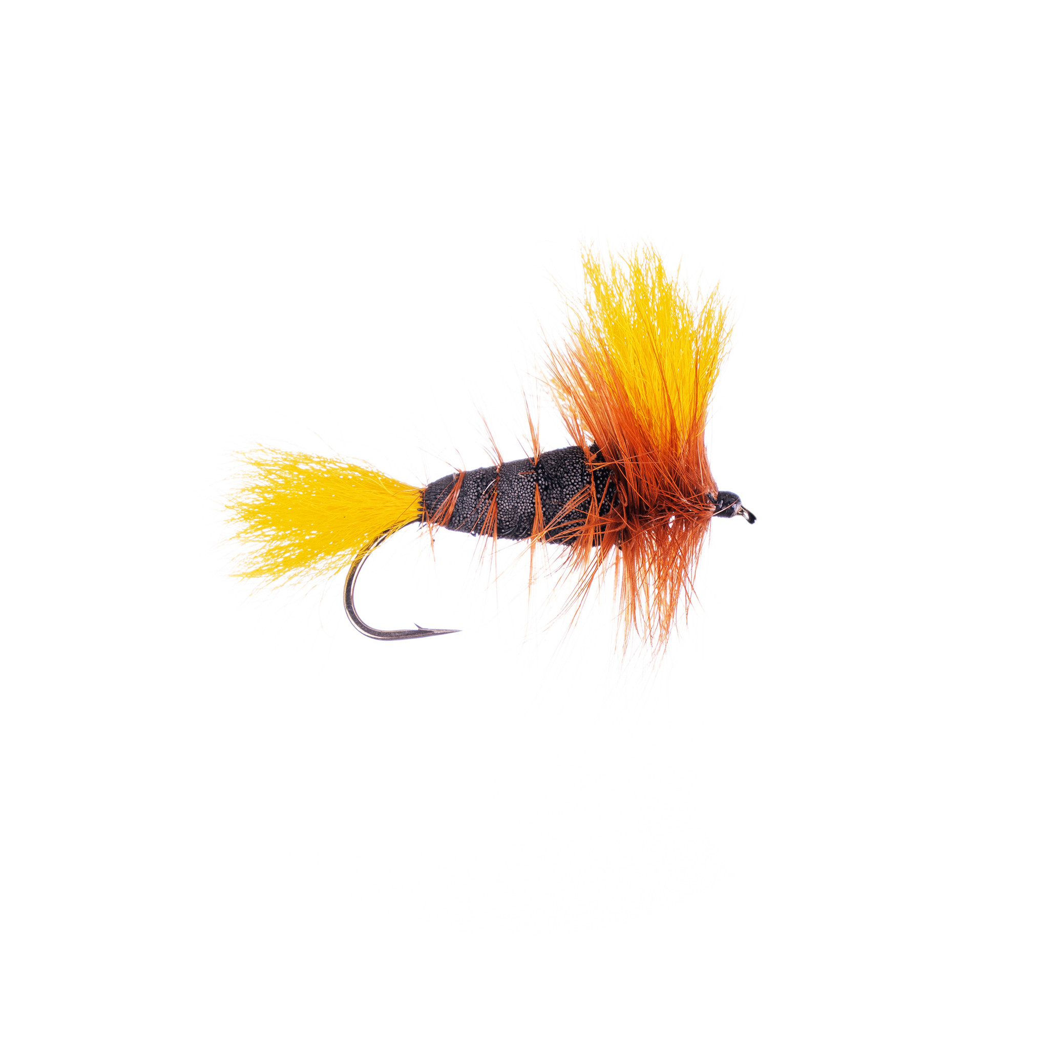 Black-Yellow Tail-Brown Hackle (Wulff Bomber) #4
