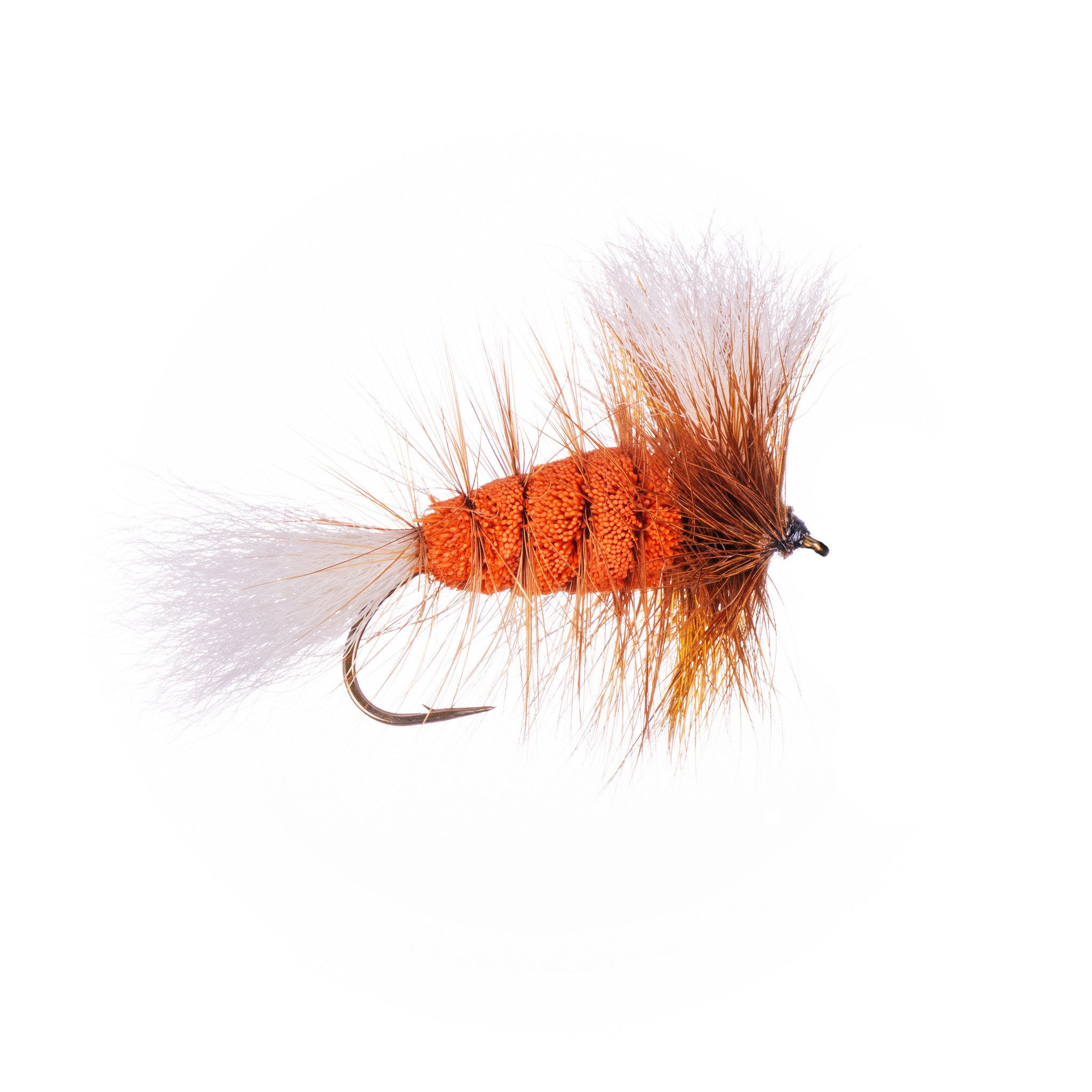 Orange-White Tail-Brown Hackle (Wulff Bomber) #6
