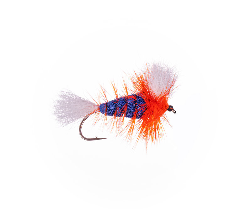 Labatt Blue-White Tail-Hot Orange Hackle (Wulff Bomber) #4