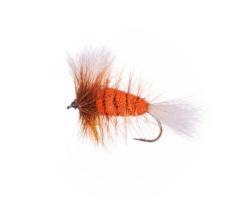 Orange-White Tail-Brown Hackle (Wulff Bomber)