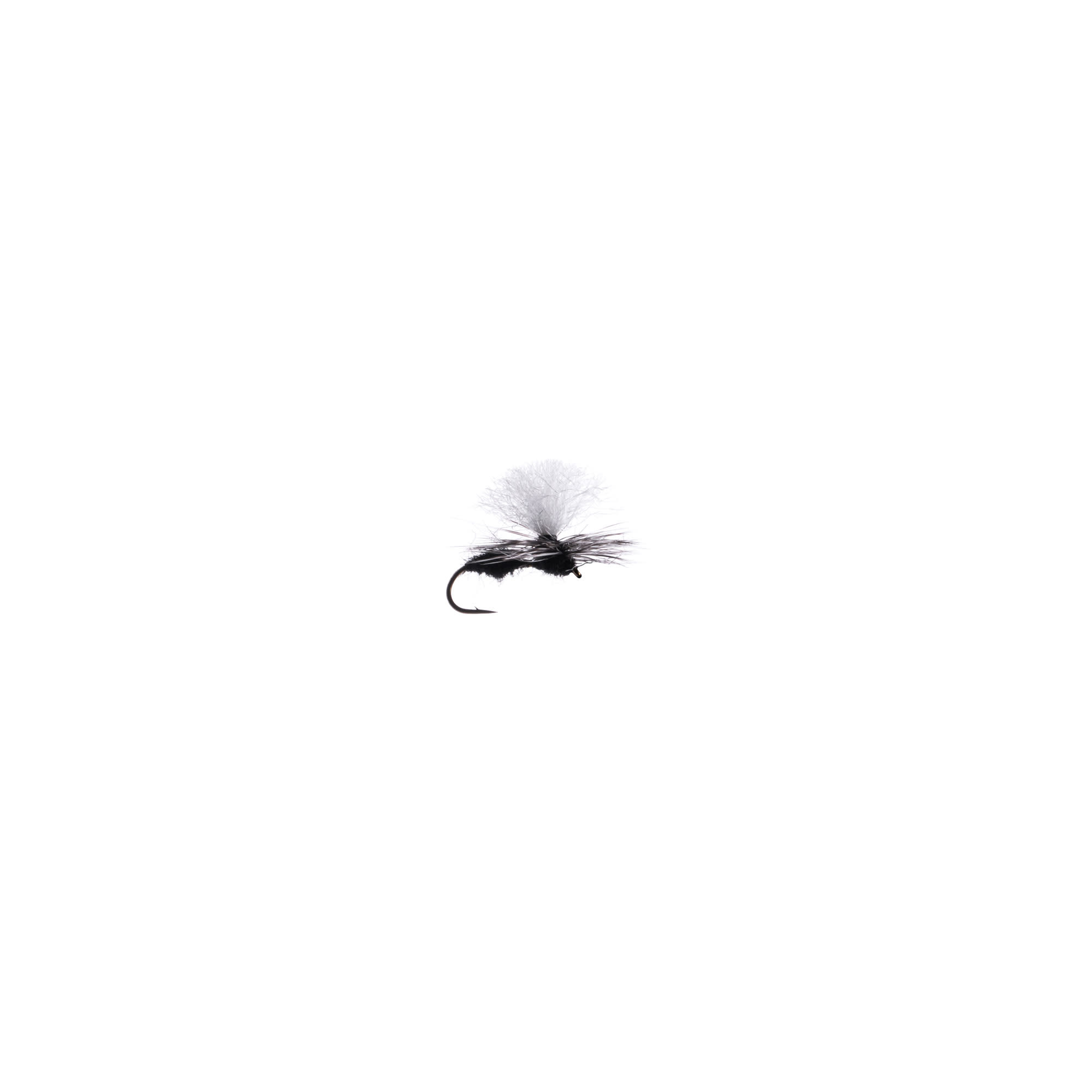 Black Para-Ant #14
