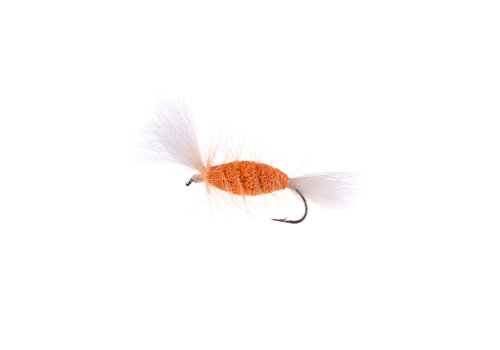 SHRIMP-White Tail-Shrimp Hackle (Cigar Bomber) #6