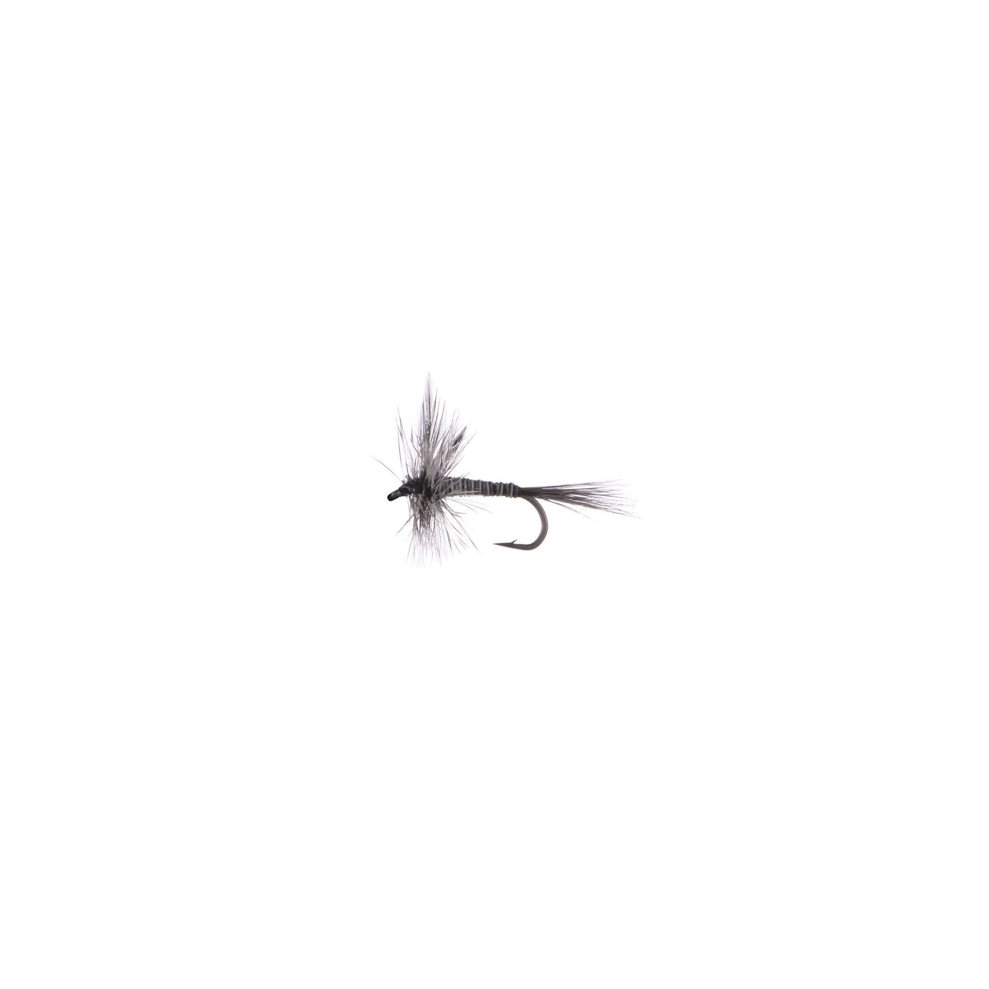 Mosquito #14