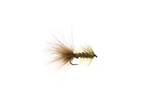 Woolly Bugger Olive #04