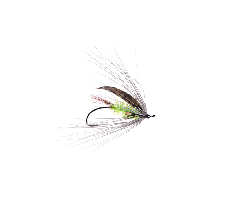 Dylan Spey (A. Jackson Silver Single) #7