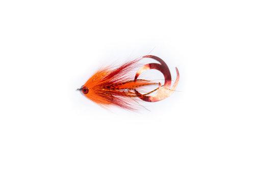 Ezee Bait - Orange
