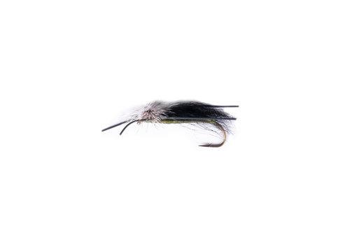 Trottinette Black Wing Olive Body (Bronze Single #2)