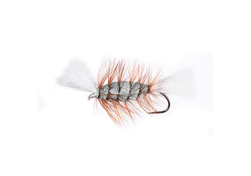 Gray - White Tail - Brown Hackle (Cigar Bomber)