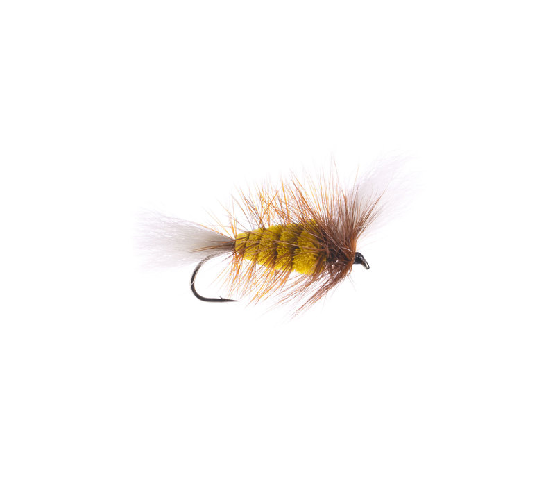 YELLOW-White Tail Brown Hackle ( Wulff Bomber)