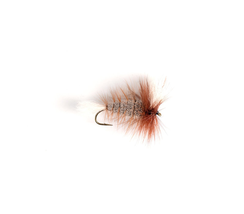 Gray - White Tail - Brown Hackle (Wulff Bomber)