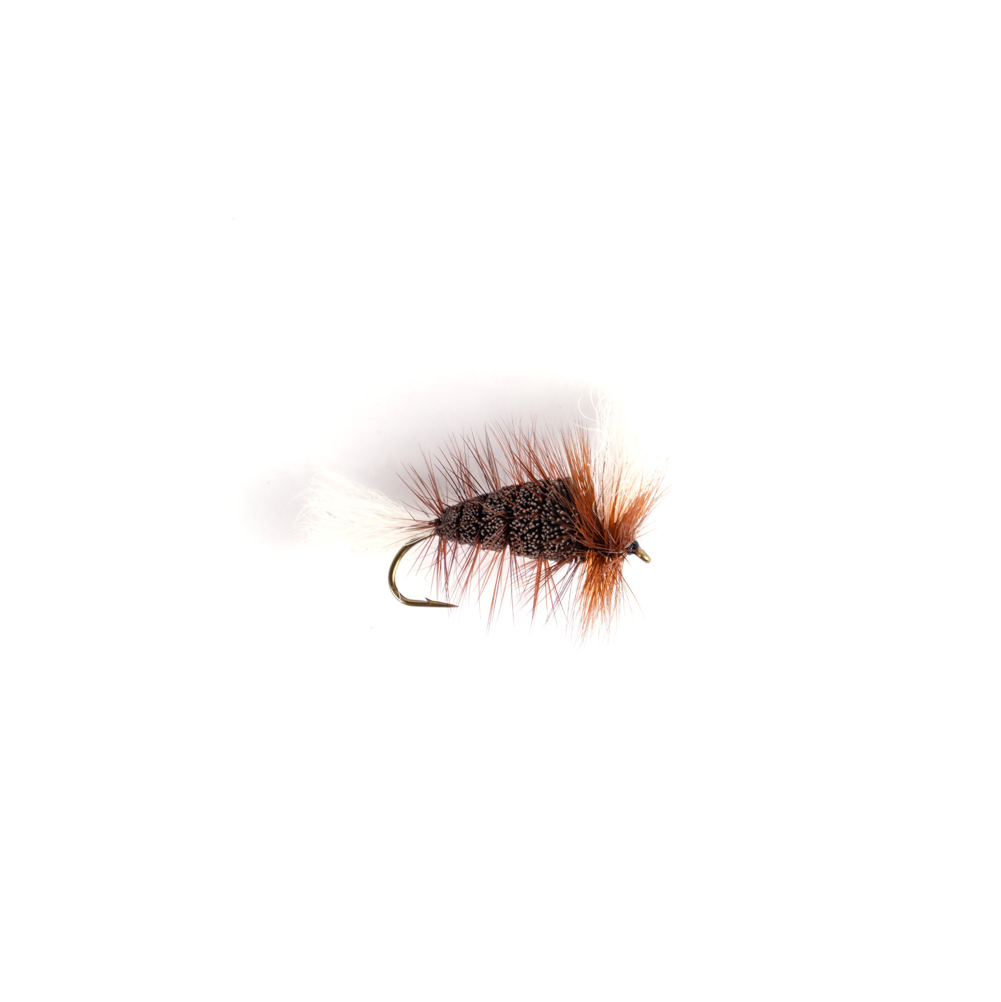 Chocolate-White Tail-Brown Hackle (Wulff Bomber)