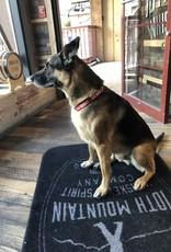 Dog Collar Red Large