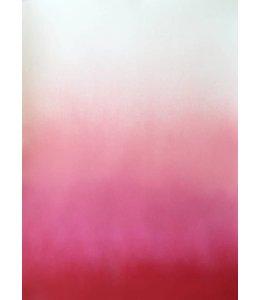 'HAZY PINK'   :  by  ANNE NOWAK : FRAMED