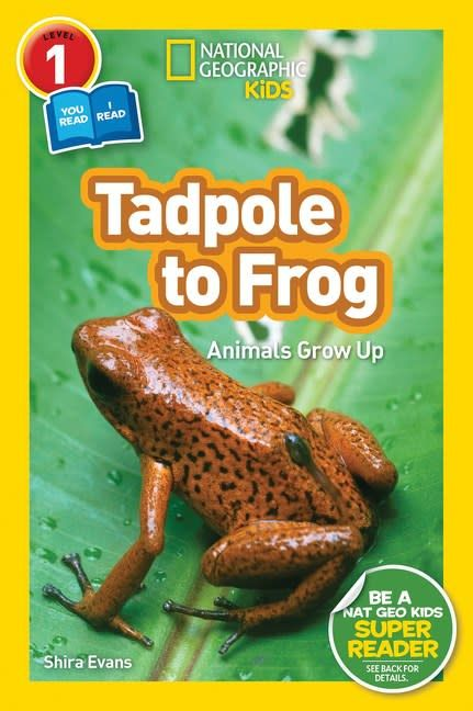 National Geographic Children's Books Tadpole to Frog (National Geographic Readers, Lvl 1)
