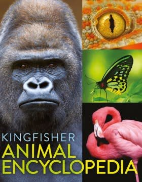 Kingfisher The Kingfisher Animal Encyclopedia