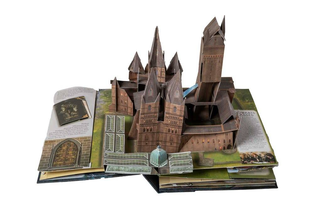 Insight Editions Harry Potter: A Pop-Up Guide to Hogwarts