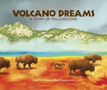 Web of Life Children's Books Volcano Dreams