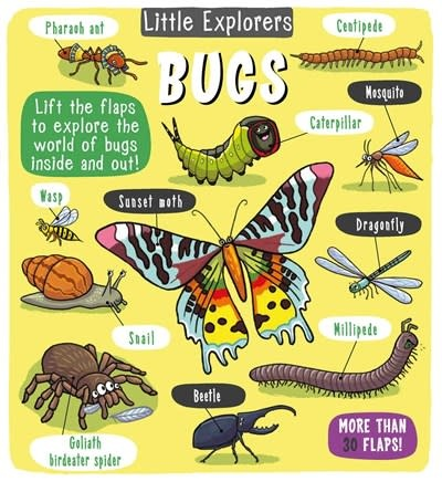 little bee books Little Explorers: Bugs