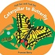 Candlewick Caterpillar to Butterfly: Fold Out and Find Out