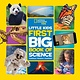 National Geographic Children's Books Little Kids First Big Book of Science