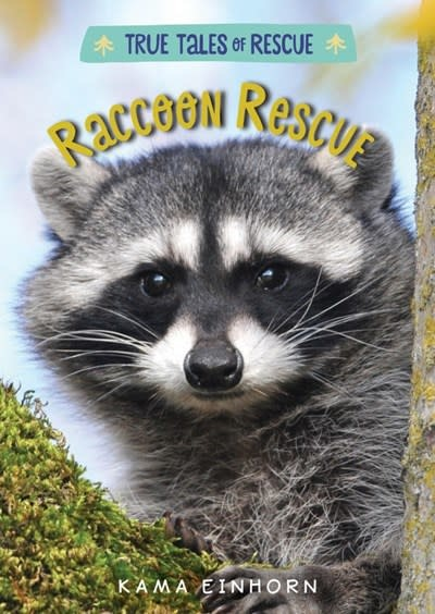HMH Books for Young Readers Raccoon Rescue