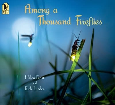 Candlewick Among a Thousand Fireflies