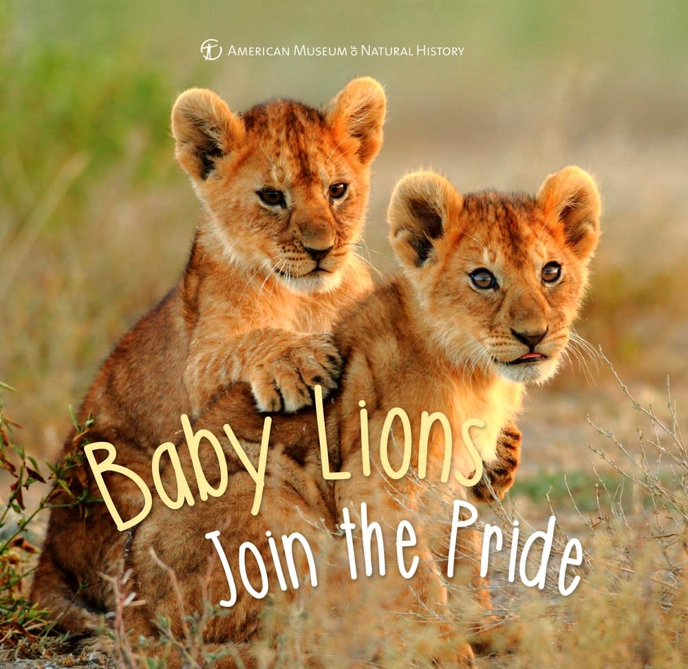 Sterling Children's Books Baby Lions Join the Pride