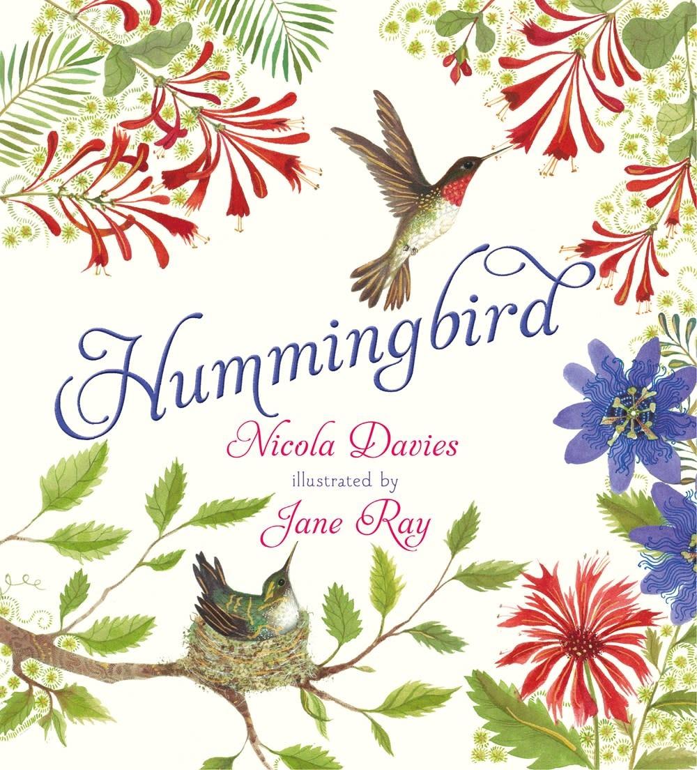 Candlewick Hummingbird