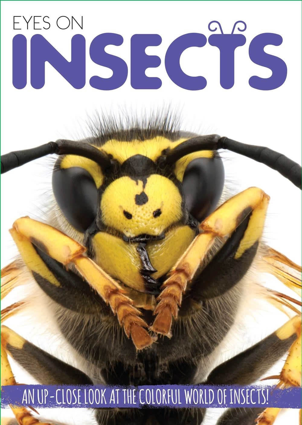 Silver Dolphin Books Eyes On: Insects