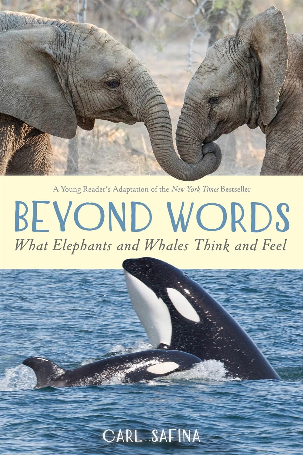 Roaring Brook Press Beyond Words: What Elephants and Whales Think and Feel