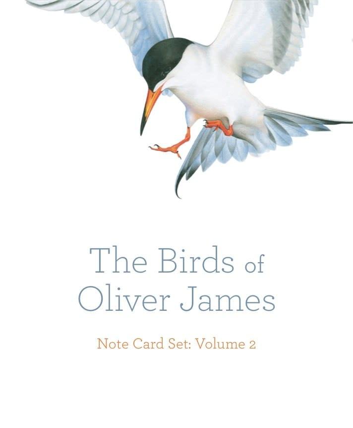 Heyday The Birds of Oliver James Note Card Set (Volume 1)